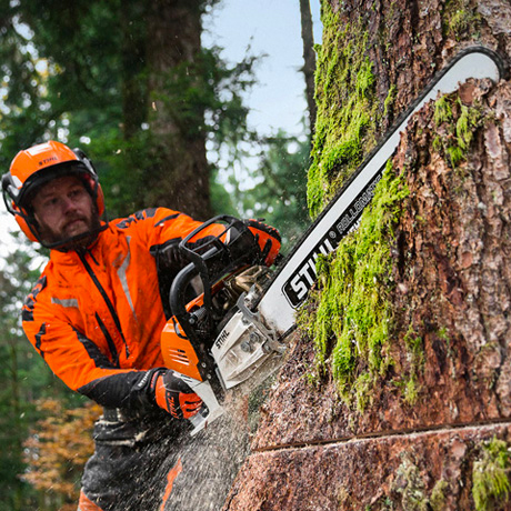 Stihl MS 500i longer bars - no problem!